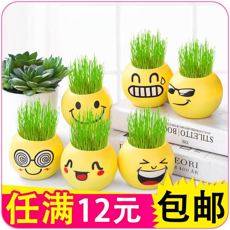 浇水长草的植物娃娃小花农小盆栽植物迷你可爱负离子长草娃娃草头