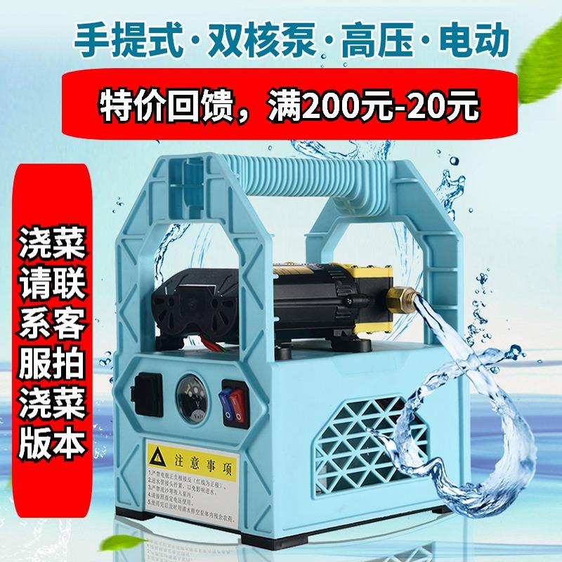 电动喷雾器农用手提式高压双电机水泵锂电池新式多功能果树打药机