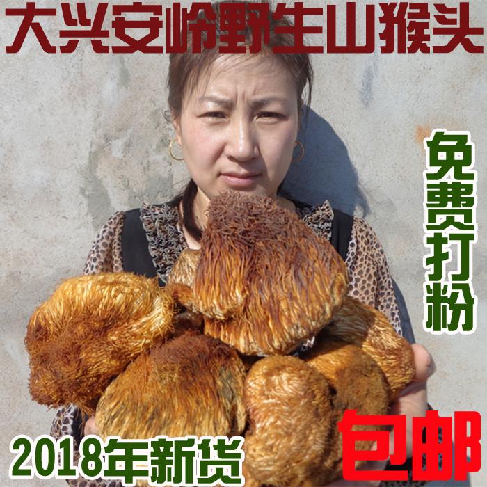 东北特产大兴安岭山货特级野生猴头菇养胃干货免费打猴头菇粉250g