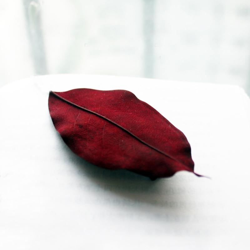 19.90元包邮【包邮】原创文艺森林系树叶鸭嘴夹