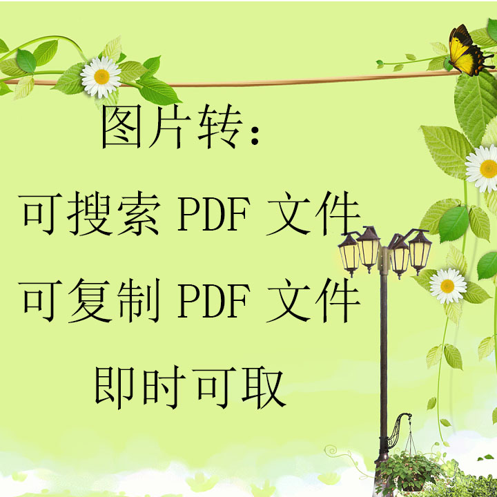 Picture to search PDF file PDF file encryption common scan picture to word support multiple languages