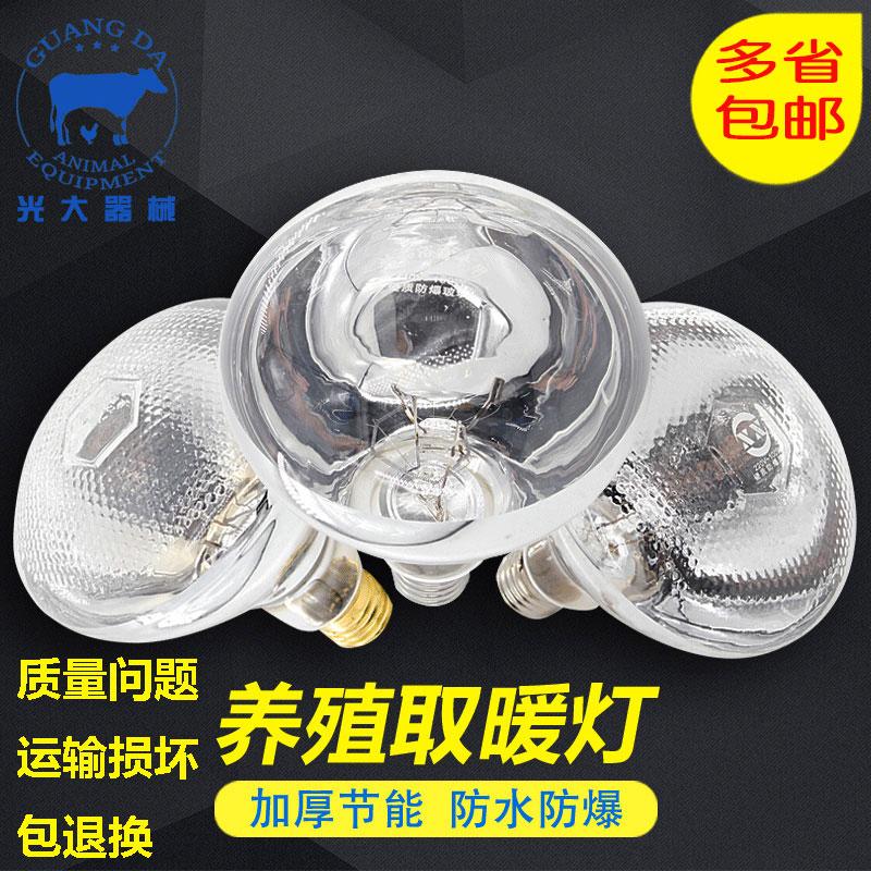 红外线保暖灯仔猪红外线灯泡取暖灯畜牧保温灯泡养殖场专用保暖灯