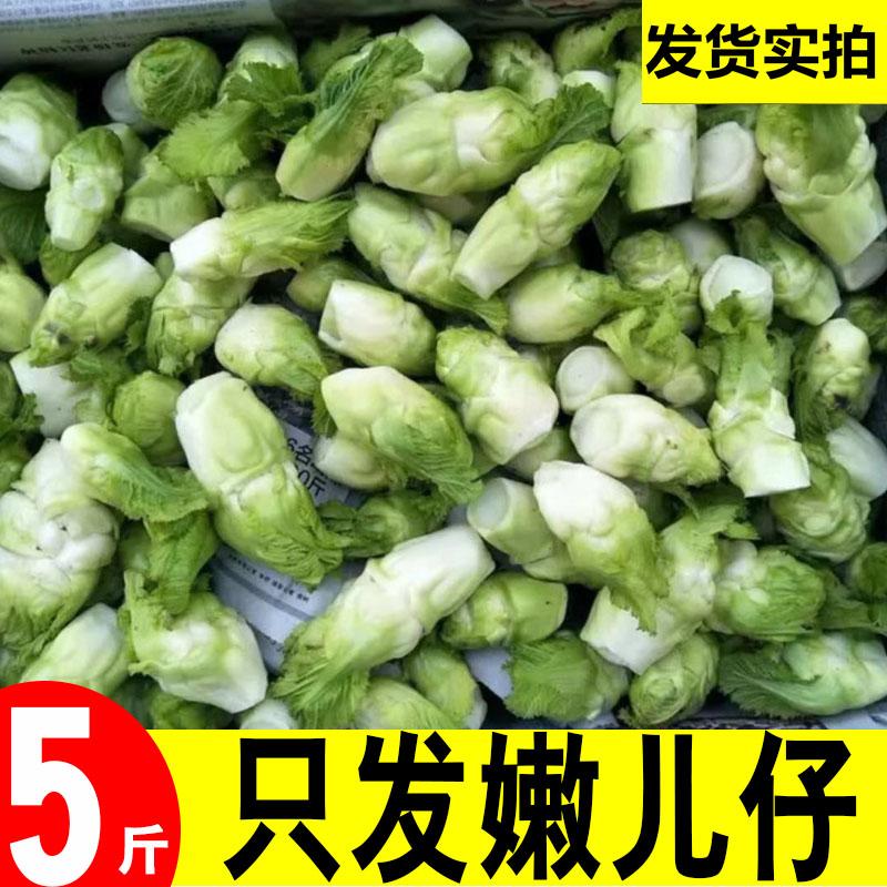 四川儿菜5斤时令嫩儿仔新鲜绿色蔬菜农家自种娃娃菜母子泡菜原料