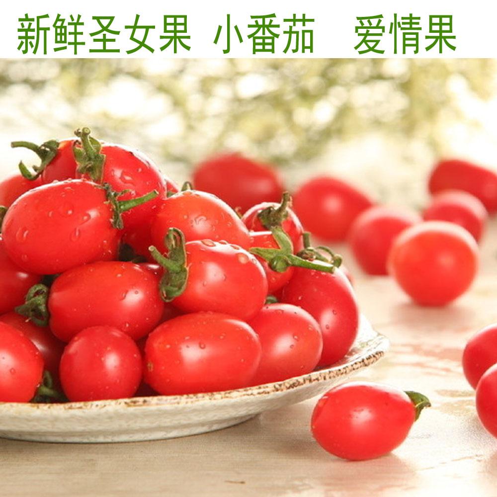 新鲜蔬果圣女果珍珠小番茄樱桃小西红柿爱情果 500g 顺丰快递