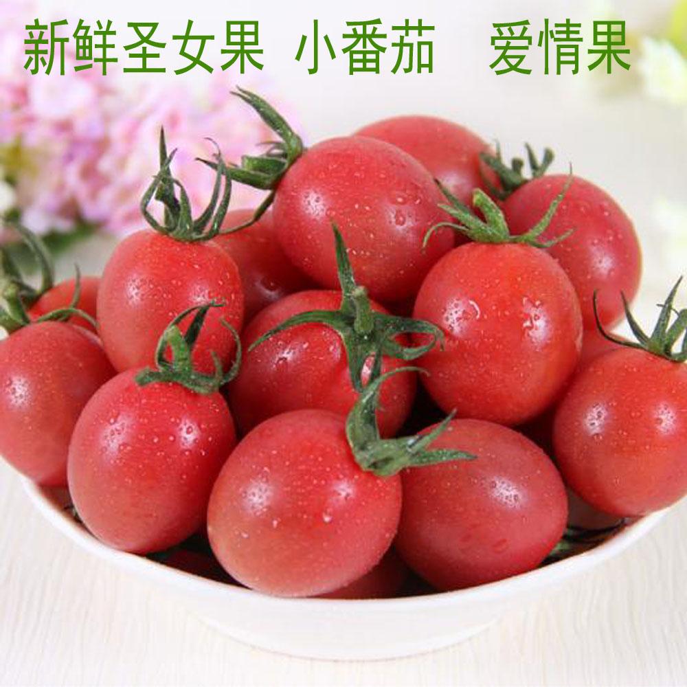 圣女果 小西红柿 珍珠小番茄 樱桃小番茄 爱情果新鲜水果 500g/份