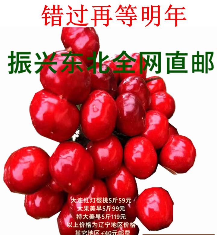Dalian delicious cherry 20 years old tree Hongdeng meizao batosha honey bean chelizi Black Pearl tree cooked package price