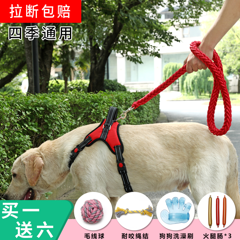 Walking dog traction rope tether dog rope dog chain small, medium and large dog golden Labrador chest back knot