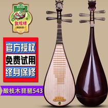 酸枝木如意头饰白牛角相轸琵琶上海民族乐器送配件543敦煌琵琶