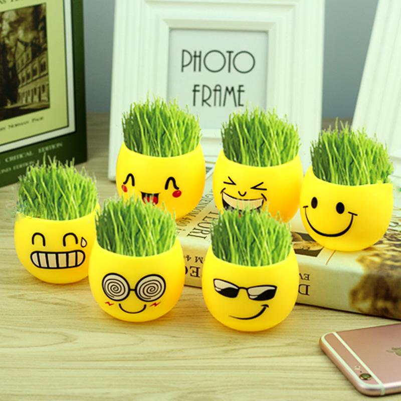 创意草头娃娃桌面迷你植物盆栽卡通可爱笑脸办公室栽培阳台小盆景