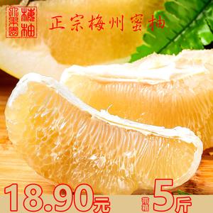 正宗广东梅州白心柚子大埔金柚蜜柚带箱5斤白肉当季新鲜国庆水果