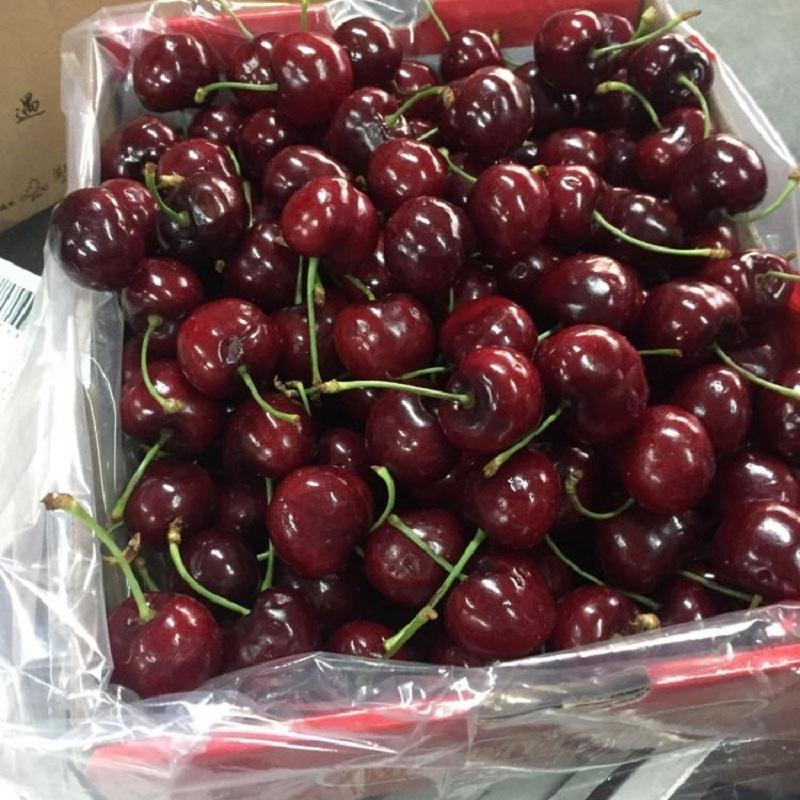 新鲜水果 智利进口车厘子 大樱桃 jjj级 果径30-32mm 3斤礼盒装