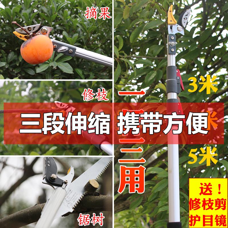 Сад искусство высокий палочки ножницы выбирать фрукты ножницы плодовое дерево ремонт палочки ножницы протяжение выбирать фрукты устройство локва ножницы высокий пустой ножницы высокий филиал пила коллекция выбирать