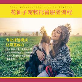 南宁花仙子宠物狗狗寄养服务春节节假日汪星人寄养代养托管可接送图片