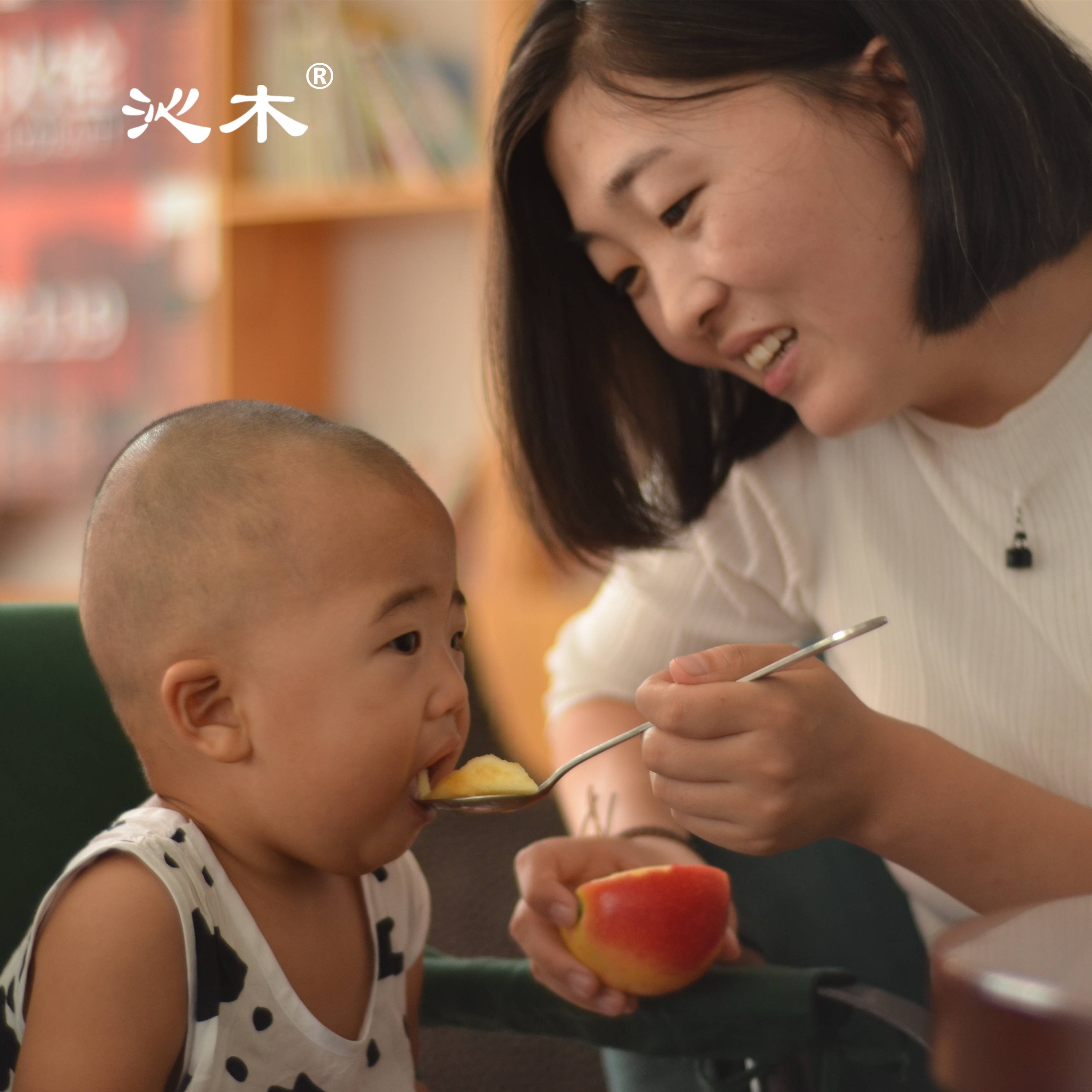 Qinmu Shanxi baby auxiliary food baby apple powder Apple sand Apple scraping mud eating small fruit 8 Jin bad fruit compensation