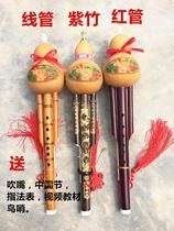 调天然紫竹双音专业教学入门真葫芦丝C调B葫芦丝初学乐器降