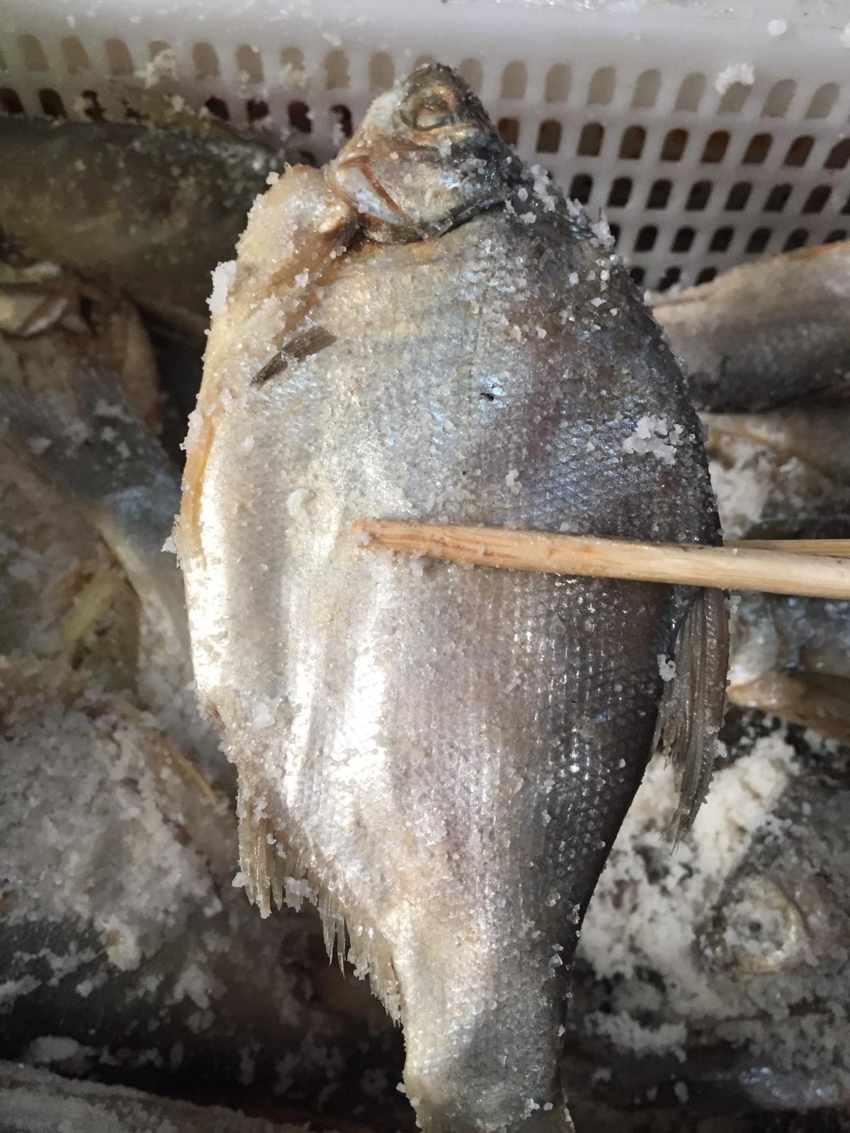 2019新款鲜活鱼水产闲置缅甸晒干产咸水生冬季节热卖代购500克