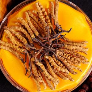 2条西藏那曲冬虫夏草野生虫草正品特产老人男人滋补