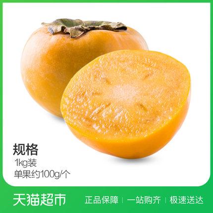 云南脆柿1kg约100g/个 柿子新鲜脆柿子水果