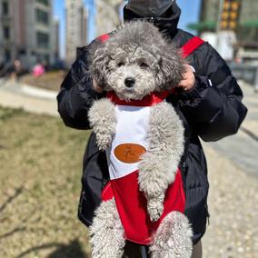 外出包狗狗胸前便携小型犬旅行背包