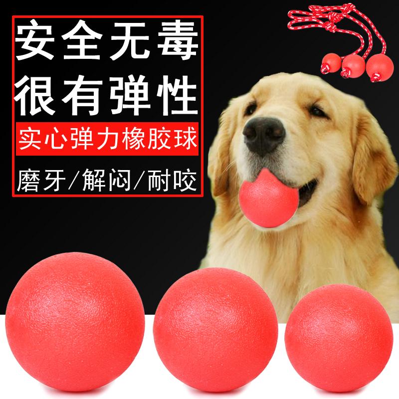Собака игрушка сопротивление укусить собака молярный крупных собак выносящий собака золото волосы тедди обучение статьи молодой собака игрушка мяч домашнее животное
