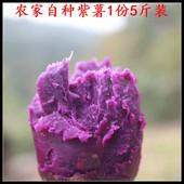 沂蒙农家紫薯新鲜红薯地瓜蔬菜山芋非越南紫薯沙土地紫署5斤软糯