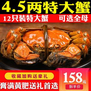 12只清水大闸蟹鲜活特大螃蟹公母现货溱湖簖蟹4.5两水产海鲜礼盒