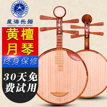 Beijing Xinghai National Musical instrument 8214-A Orchid Sandalwood yueqin Musical instrument sandalwood Yueqin delivery Accessories