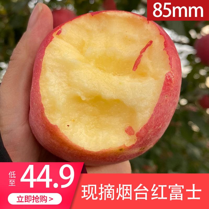 烟台红富士苹果新鲜水果现货5斤装一箱当季包邮整箱脆甜栖霞苹果