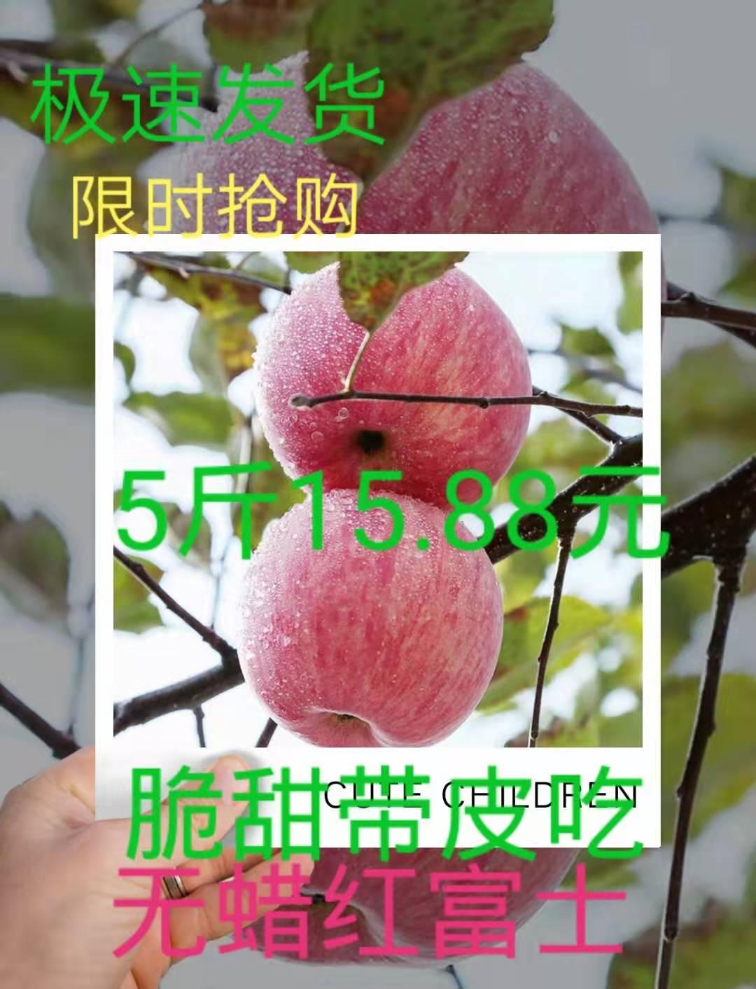 红富士苹果5斤包邮新鲜农家水果冰糖心脆甜不打蜡新鲜水果蔬菜
