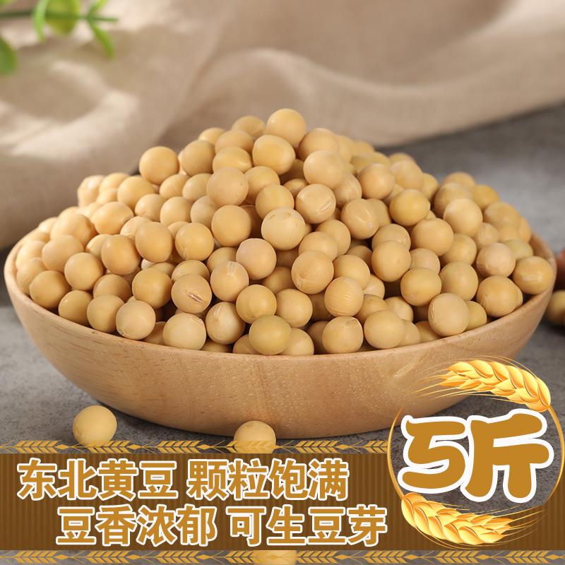 东北黄豆5斤生豆芽打豆浆专用装新鲜大豆散装农家自种笨黄豆大豆
