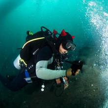 Дайвинг/Подводная охота > Шлемы для дайвинга и подводной охоты.