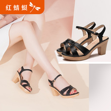 Red Dragonfly Sandals Summer 2019 New Roman Rough-heeled Slope-heeled High-heeled Sandals with Fairy Wind