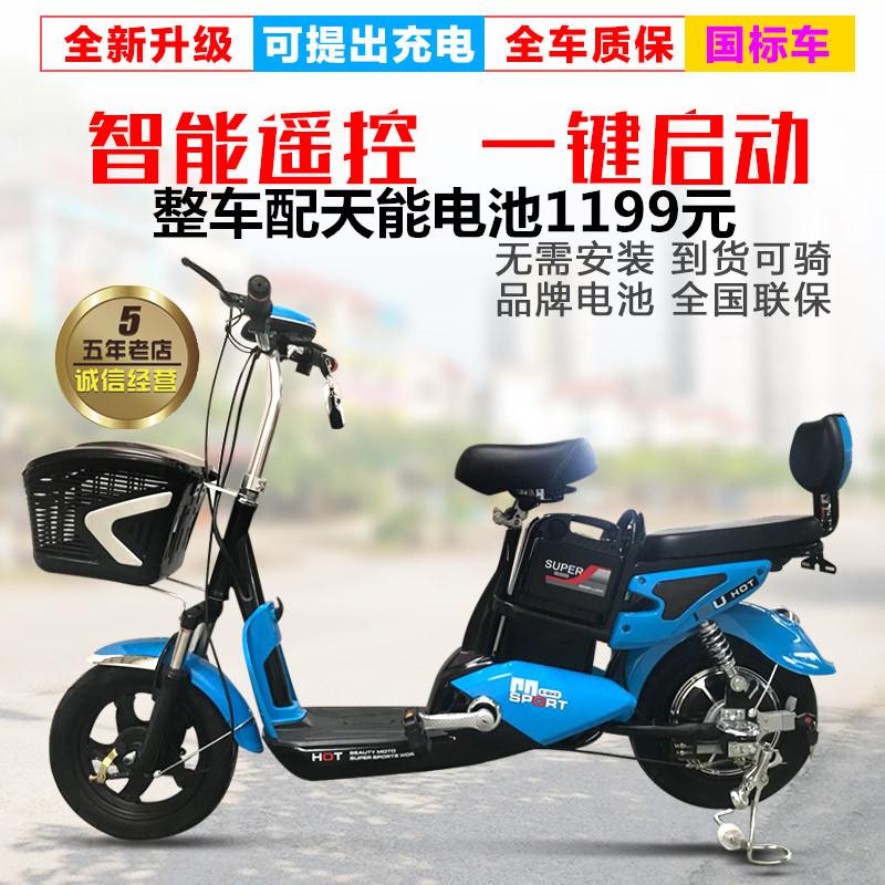 Летать голубь наука и технологии winner электромобиль 48v для взрослых педаль аккумуляторная батарея двойной автомобиль человек литий электрический велосипед