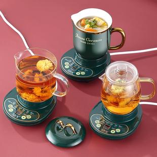 多功能养生杯电炖杯全自动迷你小型陶瓷办公室电热炖杯煮粥杯1人2