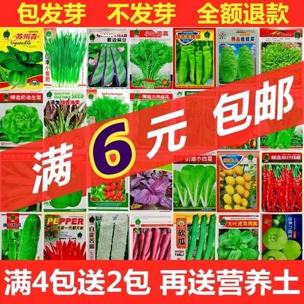 菜种籽草莓种子蔬菜种孑黄瓜香菜玉米向日葵荆芥秋葵辣椒薄荷种籽