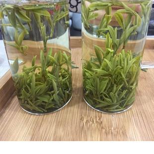 250g新茶安徽高山绿茶春茶毛尖雀舌明前茶叶浓香2019霍山黄芽