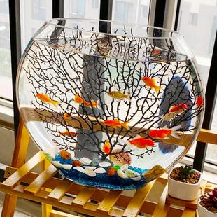 超白扁形椭圆形水草造景金鱼缸创意热带鱼桌面迷你小型玻璃斗鱼缸
