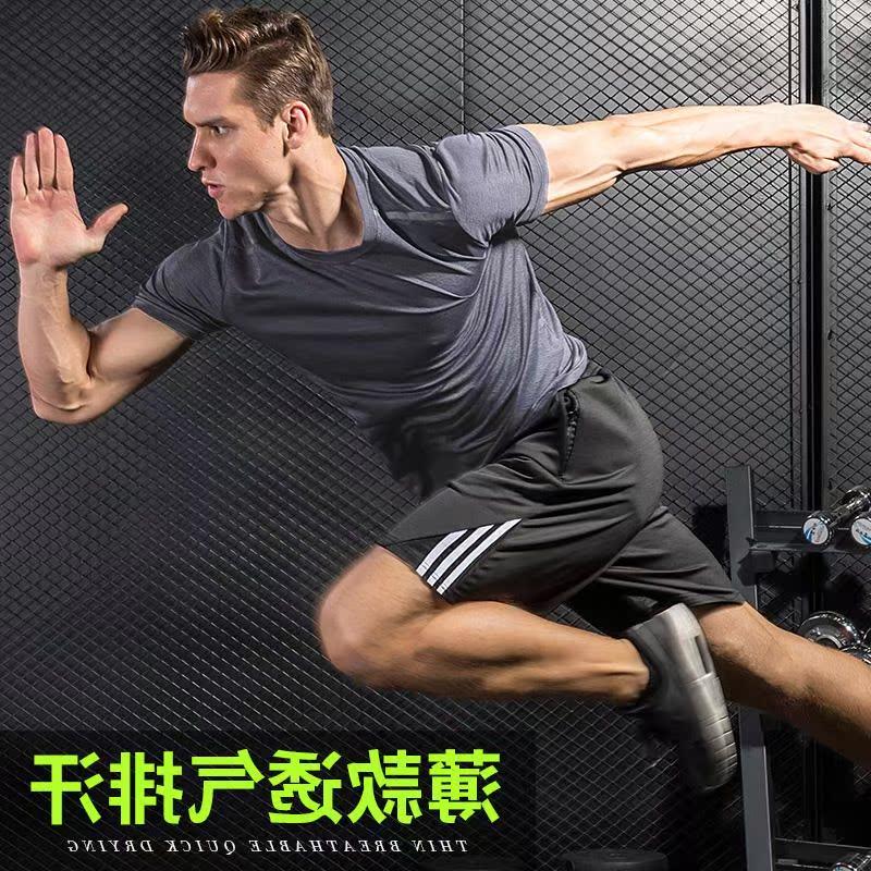 官方轩尧耐克泰运动男女夏季短裤11月07日最新优惠