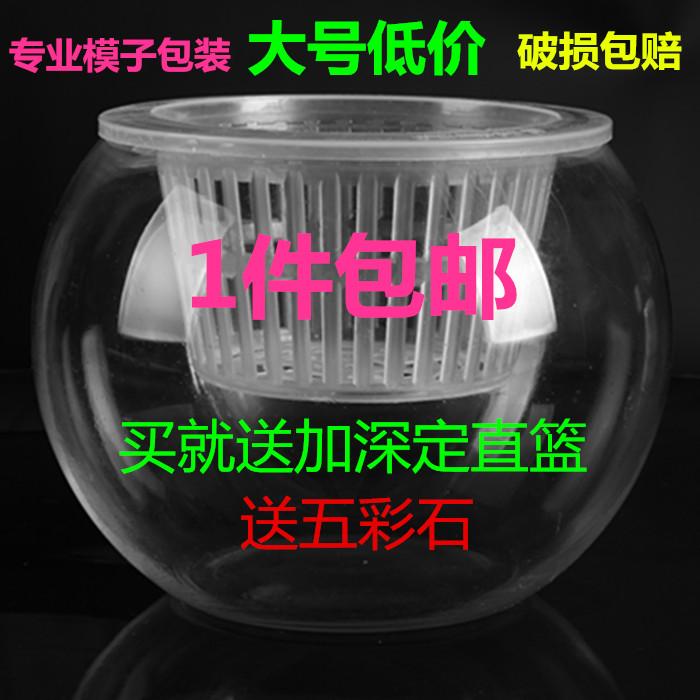 [Экстра большой] гидропонный завод стеклянная бутылка гидропоника зеленая роса ваза цветок горшок стеклянный шар контейнер для рыбы