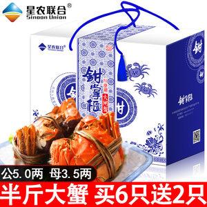 【半斤大蟹】买6送2 星农联合阳澄湖产区大闸蟹公5.0两 母3.5两