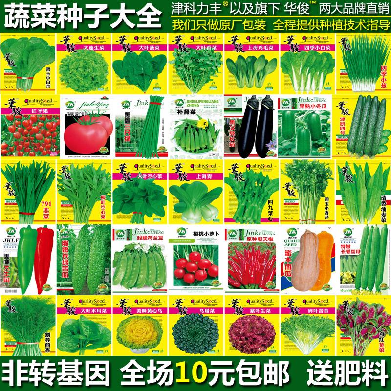 蔬菜种子四季播种香菜种子小葱农家田园菜籽阳台盆栽春秋种蔬菜籽