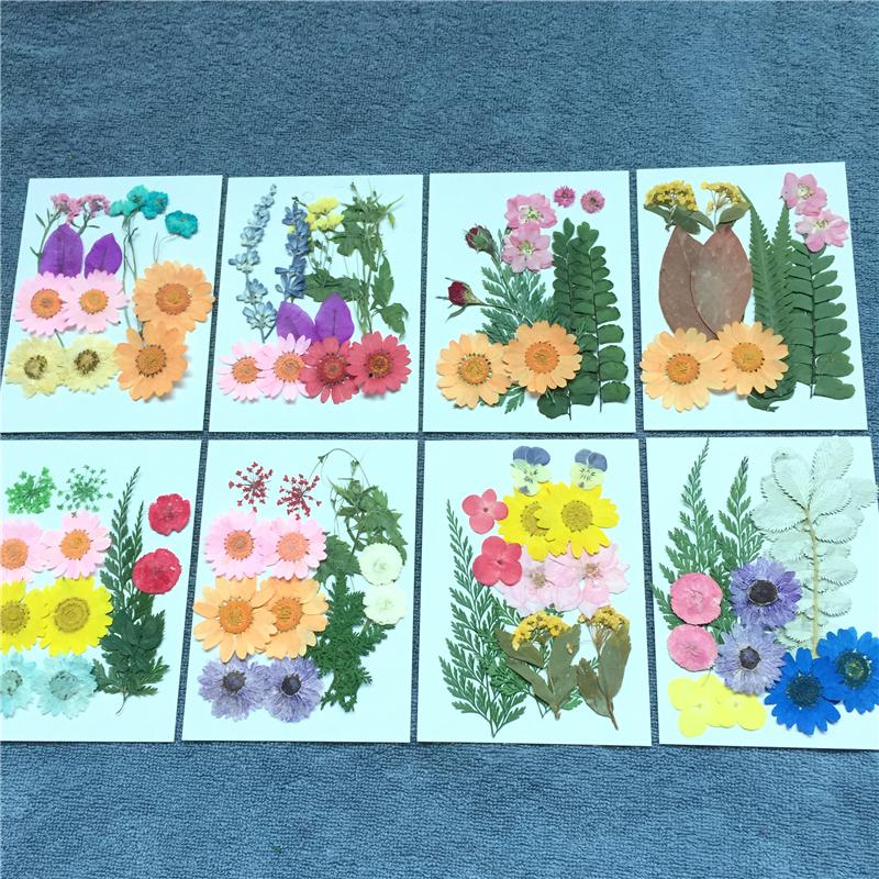 1.14元包邮押花花材包 压花 天然植物标本 贴画书签diy贴脸写真花瓣状干花妆