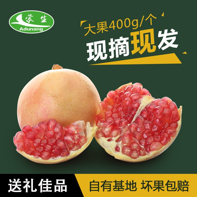 蒙生 云南蒙自甜石榴新鲜多汁香甜水果8两12斤 送礼