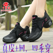 Bull Bully square Dance shoes Four Seasons shoes with jazz dancing shoes leather mesh cloth shoes soft bottom dancing shoes 7706