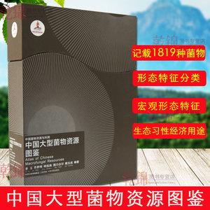 领【10元券】购买正版包邮中国大型菌物资源图鉴记载
