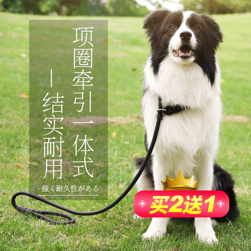 狗狗牵引绳小型犬中型犬大型犬伸缩泰迪金毛遛狗绳耐咬狗绳P链