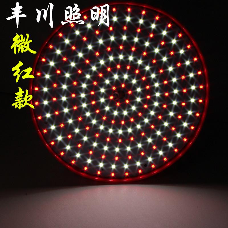 豐川LED超市燈蔬菜燈水果燈熟食燈生肉燈豬肉燈LED生鮮燈220V