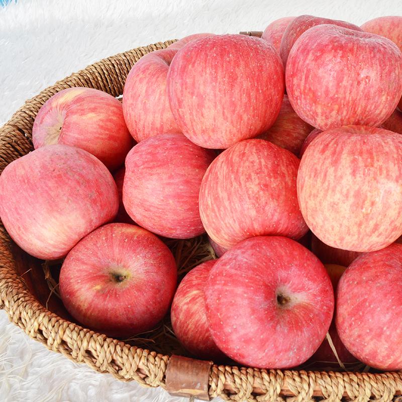 洛川红富士苹果9斤净重新鲜水果整箱当季大果