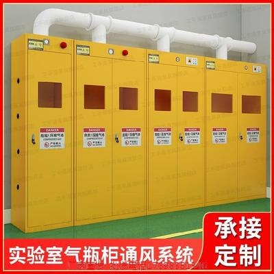 Reagent vessel test steel gas cylinder cabinet gas liquefied gas explosion proof cabinet storage rack anti corrosion anti seepage battery cabinet