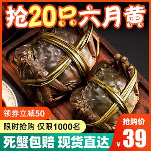 大闸蟹螃蟹鲜活现货包邮20只水产海鲜阳澄湖镇六月黄清水大闸蟹品牌